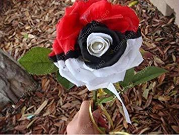 100pcs 20 sortes de graines Rose So Black Rose Charme Bonsai Graines de fleurs vivaces rares fleurs des plantes pour jardin Ciel bleu