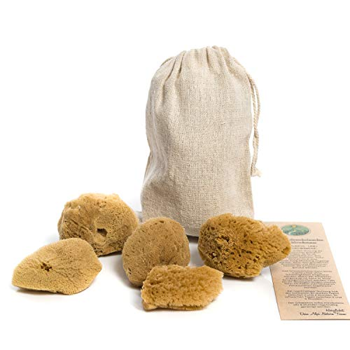 Menstruationsschwämmchen ungebleicht im 5er Set (Levantiner Naturschwamm) Menstruationsschwamm als nachhaltiger Tampon Ersatz Plastikfrei und kunststofffrei (4-6 cm)