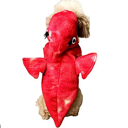 FLAdorepet Halloween-Kostüm für Hunde, Pterosaurier-Drache, warm, für den Winter, für Kleine und mittelgroße Hunde