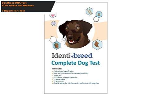 Identibreed The Most Complete Dog Rasse Test Include Canine DNA Rassen, Genetische Bedingungen, Lebensmittelunverträglichkeit, Stress, Hormone, Vitamine, Mineralien und Toxine