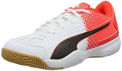 Puma Evospeed Indoor 5.5, Chaussures de Fitness Mixte Adulte, Mehrfarbig
