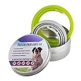 YAMER Pet Cat Dogs Collare di Oli Essenziali Naturali per Il Controllo delle pulci, 8 Mesi di Protezione con Oli Essenziali Naturali Collana utile, Multicolore Verde/Grigio (2pcs, Colore Casuale)
