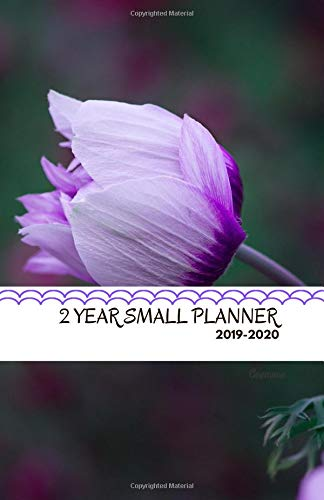 Two Year Small Planner 2019-2020 Anemone: Two-page spread monthly organizer for the next two years por Salvation Books