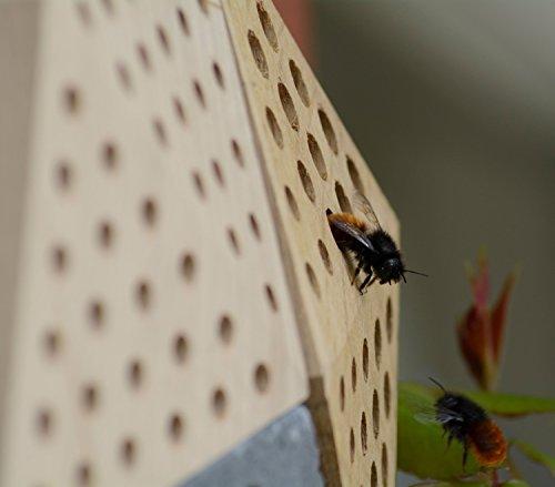 """Luxus-Insektenhotels 22660e Design-Insektenhotel """"Quartier"""" 5 Module: Beton, Eiche, Esche, 2x Buche, Insektenhaus für Wildbienen, Maße je Block, circa 15.5 x 8.5 x 7.5 cm, braun und grau - 10"""