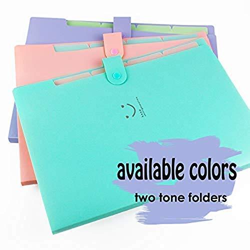 Zoom IMG-1 plastic expanding file folders accordion