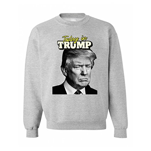 today-in-trump-awesome-illustration-small-unisex-sweater