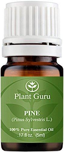 Pine Essential Oil. (Pinus Sylvestris L.) 5 ml. 100% Pure, Undiluted, Therapeutic Grade. by Plant Guru par