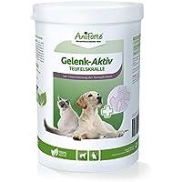 AniForte Teufelskralle Gelenk Aktiv Pulver 500 g für Hunde und Katzen, Neue Bewegungs-Freude in der Natur, Ohne Zusatzstoffe