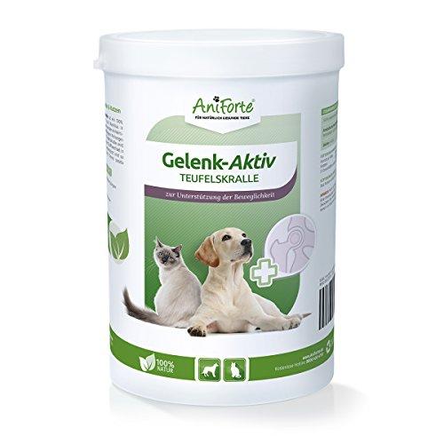 AniForte Teufelskralle Gelenk Aktiv Pulver 500g - Gelenke Akut für Ihren Hund und Katze - Afrikanische Natur für Hunde und Katzen statt MSM, Glucosamine oder Chondroitin - Sehnen und Bänder 500 g