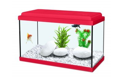 acquario-nanolife-40x20x25h-18-litri
