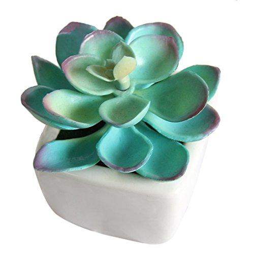 Lingxuinfo artificiale pianta in vaso mini falso piante grasse con vasi per casa, ufficio, scuola-Viola, Scarpette a strappo Voltaic 3 Velcro Fade - Bambini, 5 * 5 * 8cm