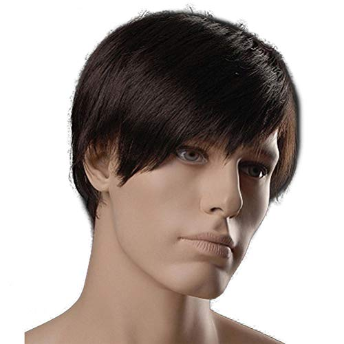t Synthetic Men Wigs Dark Brown Natural with Side Bangs Male Wig ()