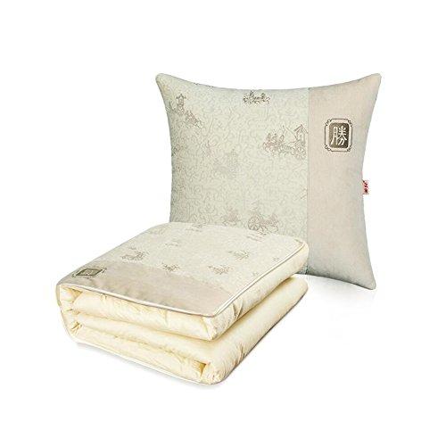 CJC Kissen Faltbar Auto Decke Textilien Rückenlehne Bettwäsche Bequemlichkeit Tragen Lager Stuhl Kissen Nachttisch Multifunktion Unterstützung Zurück (Farbe : T2) (Nachttisch Lager)