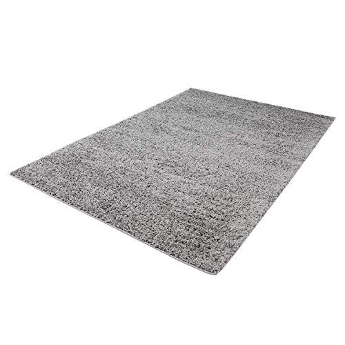 Taracarpet Shaggy Teppich Hochflor Langflor Teppiche fürs Wohnzimmer und Schlafzimmer geeignet sowie für die Küche und Kinderzimmer Ökotex 100 Zertifiziert (250X250 cm quadratisch, Silber grau)