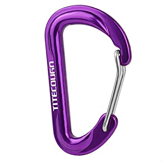 TITECOUGO 6cm D Shape Carabiner Clip Hook D-Ring Key Chain Nonlocking Durable Keychain Mini Carabiners 60mm Small dd Keyring Chains Ring Climbing Lighter Outdoor for Men and Women Purple 2 PCS