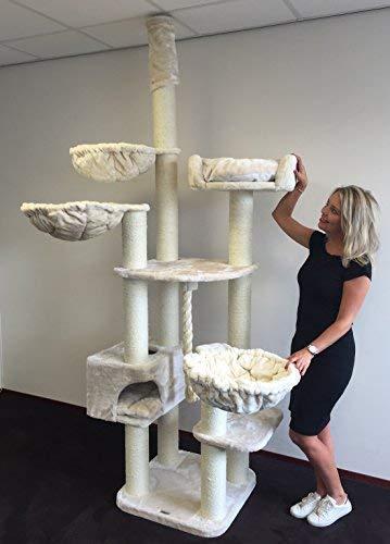 RHRQuality Kratzbaum große katze XXL Catdream Extreme Creme Stabil 54KG. Sisalstämme 12cm Ø Speziell für große und schwere Katzen. Kratzbaum deckenhoch. Qualitätsproduktion von