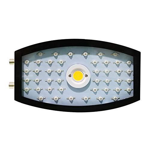 FOUWE 1100W Gartenlampe, Mit Blühenden Gartenpflanzen Bepflanzt, Ideal Für Zimmerpflanzen, Blumen Und Gemüse. COB-Lichtquelle -
