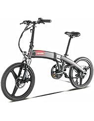 E-Road Apollo Smart 2S Vélo Électrique Mixte Adulte, Gris Anthracite