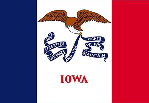 Tiukiu Iowa State Flag Sticker Auto Decal Car Truck Window Wall Phone 8 Inch In Height Iowa State Flower