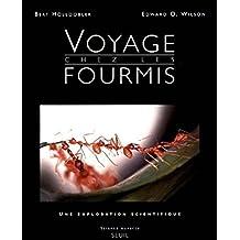 Voyage chez les fourmis - une exploration scientifique