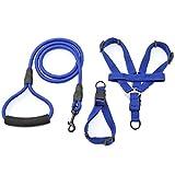 POPETPOP Hundegeschirr Leine Set Verstellbare Hundehalsband Leine für Kleine Mittlere Hunde Größe M (Blau)