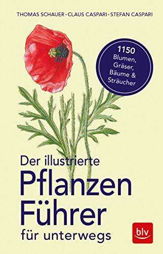 Der illustrierte Pflanzenführer für unterwegs: 1150 Blumen, Gräser, Bäume und Sträucher (BLV)