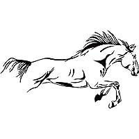 Amazon.es: dibujos caballos colores: Bebé
