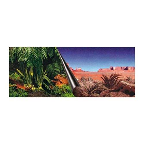 Europet Bernina 241-109076 Photo Back Board, 60 x 30 cm Jungle and Dessert Motif