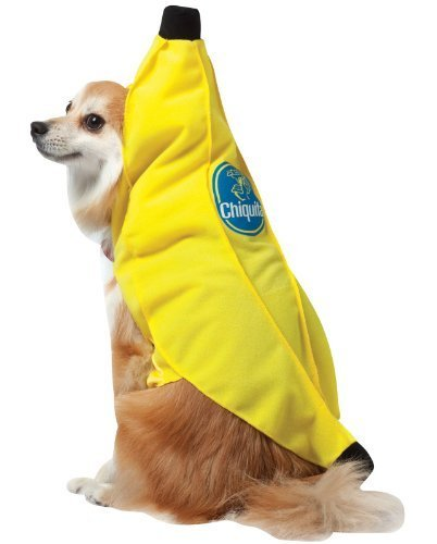 rasta-imposta-chiquita-banana-dog-costume-x-small-by-silvertop-associates-dba-rasta-imposta-english-