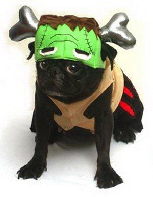 Dogs & Co. Halloween - Ein Monster Hund Kostüm, BARKENSTEIN (Frankenstein) Komplett mit Einem Silbernen Knochen Sweatshirt. Groß für Parteien und Süßes Oder Saures! Größe 20