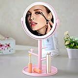 KINLO Specchietto da Trucco con luci a LED Ricaricabili Specchi da Tavolo Specchietto da Barba in Piedi con USB/Batteria (Rosa)