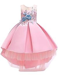 LADYLUCK Vestido Fiesta Niña Princesa Bebé Disfraz De Ceremonia Cumpleaños Vestido Infantil Flores Carnaval ...