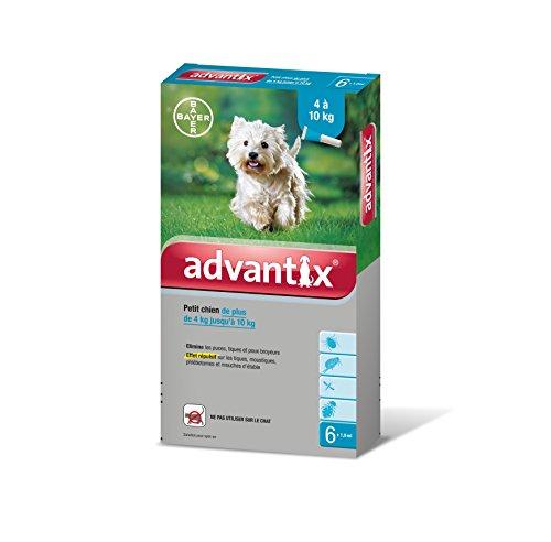 bayer-advantix-petit-chien-4-a-10-kg-6-pipettes-antiparasitaires-1-ml