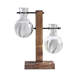 Sobotoo Creative Hydroponic Plant Transparent Bulb Vase Planter Wooden Frame Coffee Shop Garden Home Decr (B)