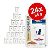 Doppelpack Royal Canin Renal - Veterinary Diet Thunfisch