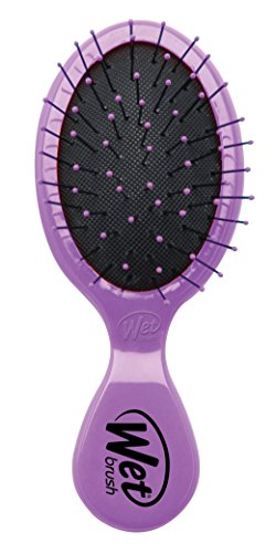 wet-brush-squirt-classic-spazzola-viola