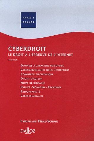 Cyberdroit : Le droit à l'épreuve de l'internet