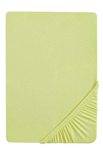flanell spannbettlaken biberna 77144 Jersey-Stretch Spannbetttuch, nach Öko-Tex Standard 100, ca. 90 x 190 cm bis 100 x 200 cm, pistaziengrün