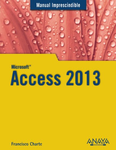 Access 2013 (Manuales Imprescindibles)