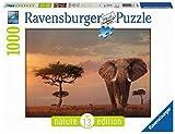 Ravensburger 15159 Elefante del Masai Mara Puzzle, Foto e Paesaggi, 1000 Pezzi