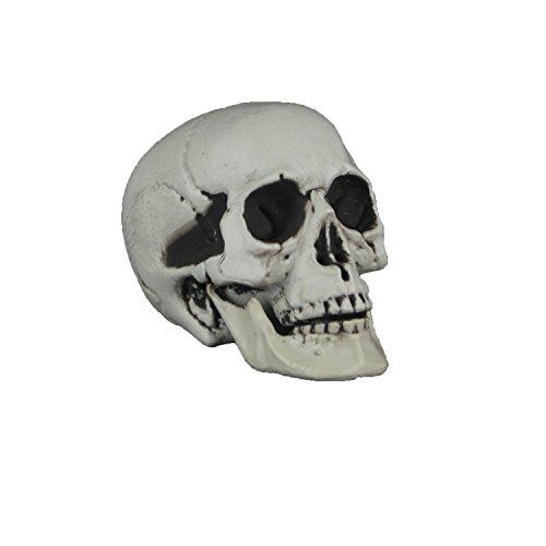 Menschlicher Schädel, Schädel Kopf Modell Deko, Tricky Toy, Totenkopf Halloween/Room Escape Requisiten/Spukhaus Dekoration, circa 22 * 17 * 16cm (Stil 6) (Lebensgroße Halloween Requisiten)