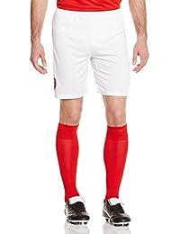 Puma Arsenal Men's Shorts