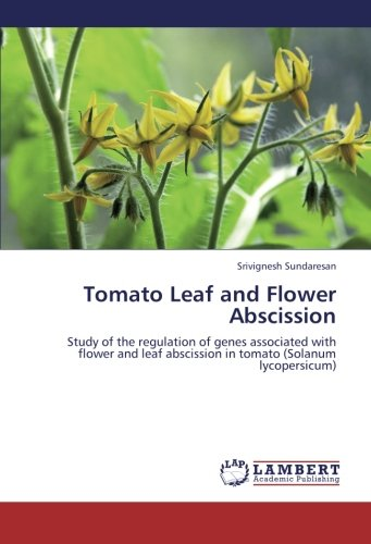 Tomato Leaf and Flower Abscission: Study of the regulation of genes associated with flower and leaf abscission in tomato (Solanum lycopersicum)