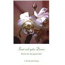 Samt und spitze Dornen: Rosen für das ganze Jahr