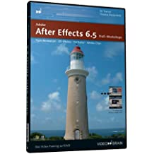 Adobe After Effects 6.5 Profi Workshops. Video-DVD für Windows 98/2000/XP oder Mac 0S 9.1 bzw. 0S x 10.1: Typo- Animation. 3 D-  Effekte. TV- Trailer. Werbe- Clips