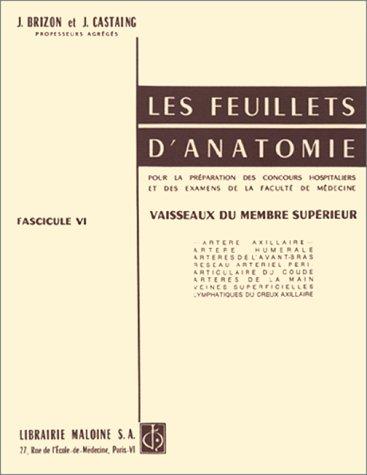 Les Feuillets d'anatomie : Tome 6, Vaisseaux du membre supérieur