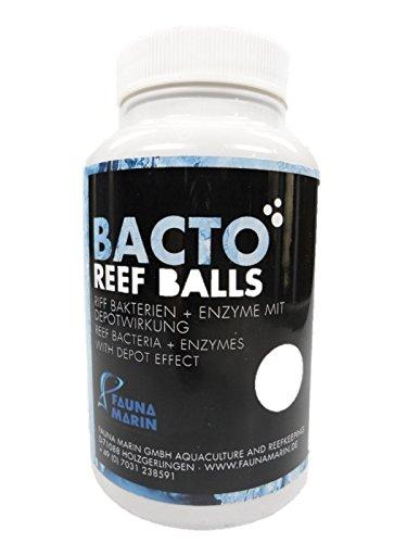 fauna-marin-bacto-reef-balls-250-ml-riff-di-batteri