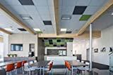Schallabsorber für die Decke im Büro, Farbe: Dunkelgrau, zum Einhängen in die Akustikdecke - aus Naturfasern - Platten für die Schallschutzdecke -Schalldämmung Decke