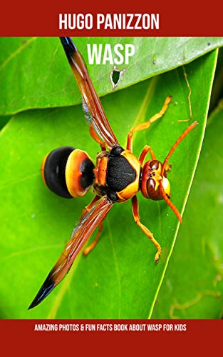 Wasp: Amazing Photos & Fun Facts Book About Wasp For Kids PDF Descargar
