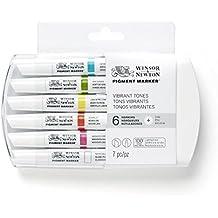 Winsor & Newton Pigment Marker - Pack de 6 rotuladores, multicolor